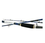 Daiwa Tournament Master Surf Fishing Rods