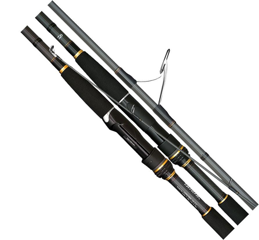 Zeland deals daiwa tournament master surf fishing rod 1603h for Daiwa fishing pole